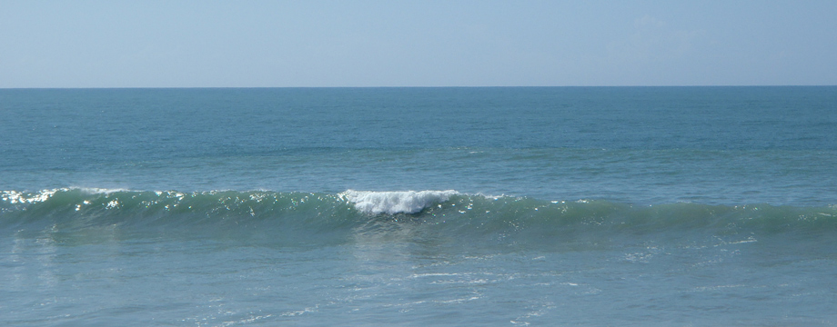 Leseni surfi in leseni kajaki Tansurf